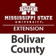 Bolivar County Offical Logo.jpg