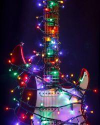 Holiday Hall of Fame_thumbnail-1_webv.jpg